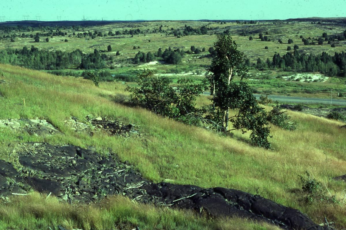 Lu zone ul laurentian university recl 250 30 jul 80 for Soil reclamation